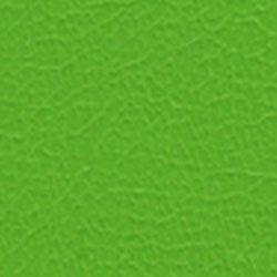 Florida Lime