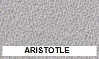 New Aquarius Aristotle