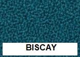 New Aquarius Biscay