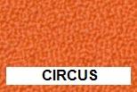 New Aquarius Circus