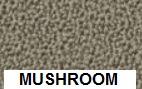 New Aquarius Mushroom